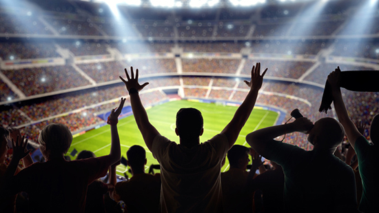 Cheering fans in a stadium